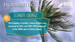 environmental issue facts template for digital signage
